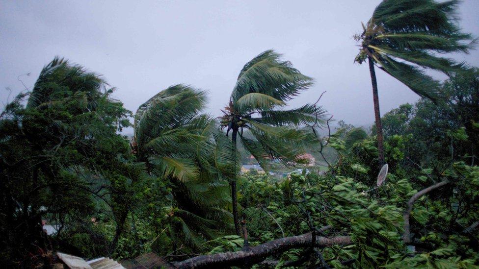 Hurricane Maria 'devastates' Dominica: PM