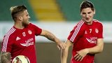 David Goodwillie and Kenny McLean