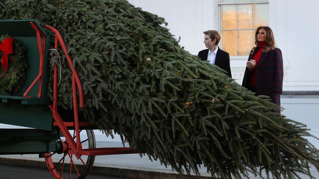 US First Lady Melania Trump receives Christmas tree