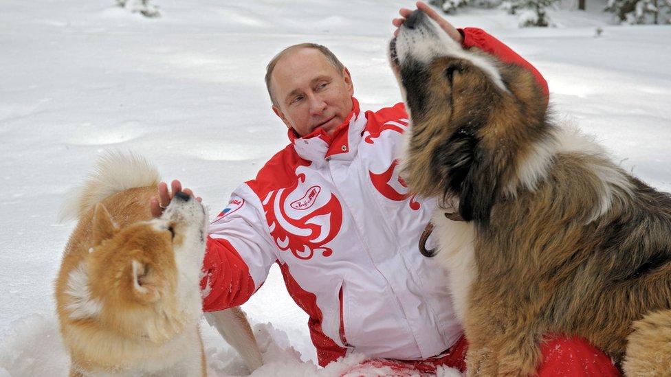 Putin con sus perros Yume (izquierda) y Buffy.