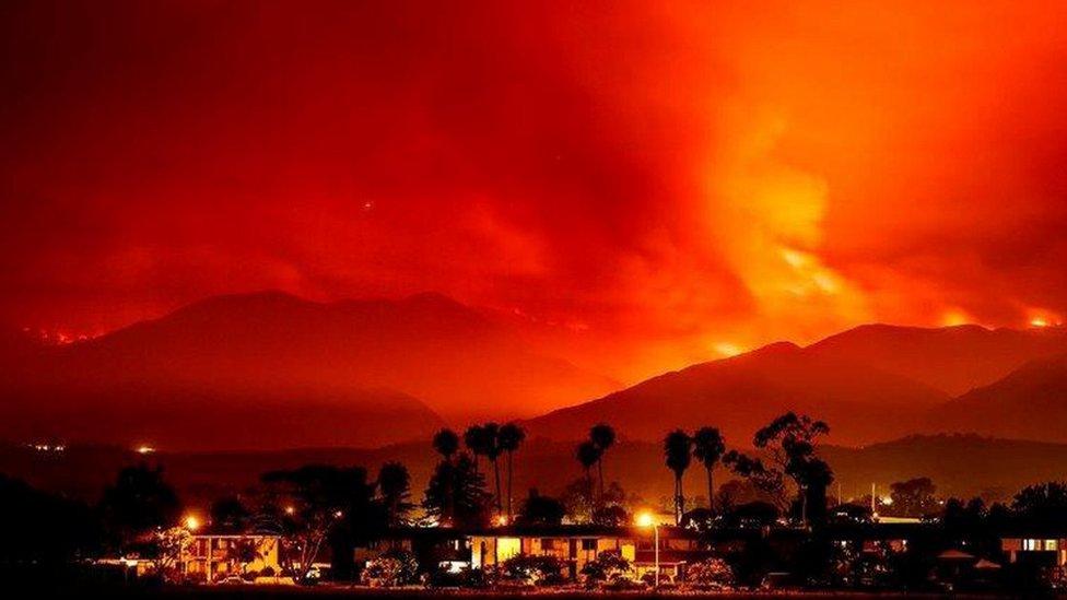 Los equipos de rescate apenas lograron contener el 10% de los incendios.