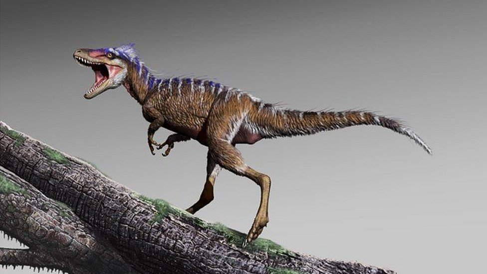 Teeny T. rex relative discovered in US