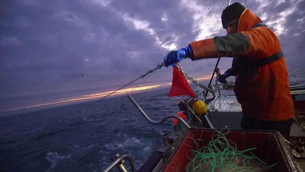 Pequeños barcos pueden realizar actividades pesqueras si no tiene o desactivan sus localizadores, pero su peso en la industria es reducido comparado con las grandes flotas de buques.