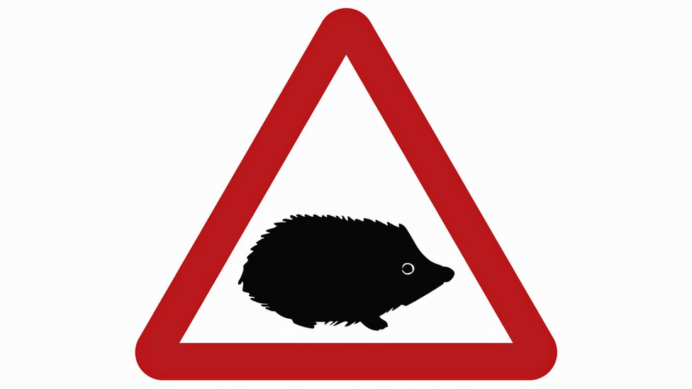 Hedgehog sign warns drivers of small wildlife hazards