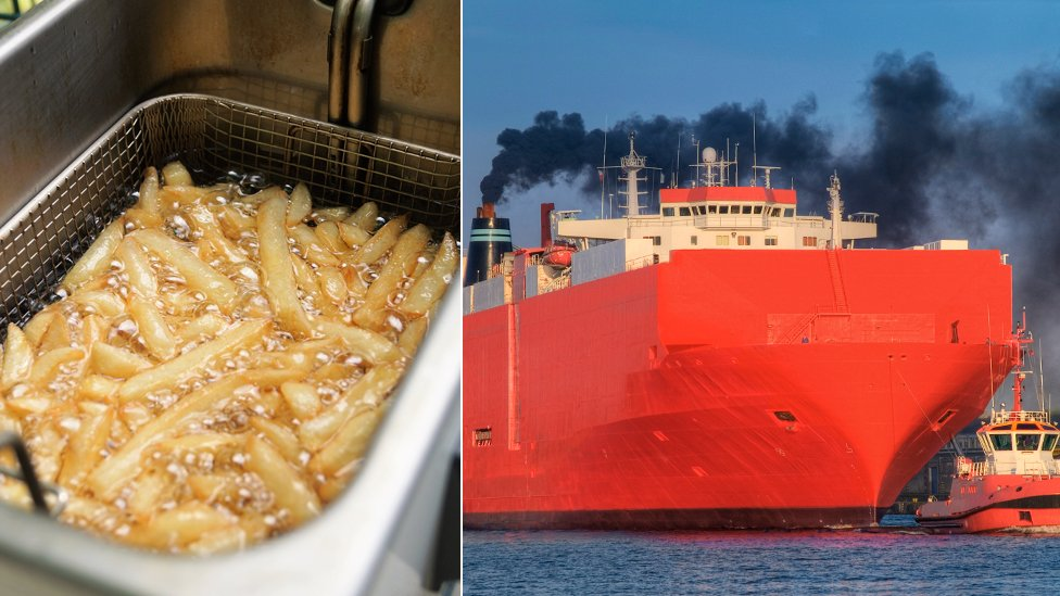Could chip fat help dirty shipping clean up its act?