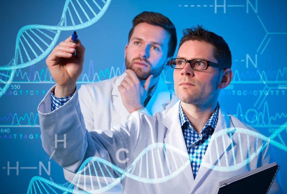 Dos científicos analizando ADN.