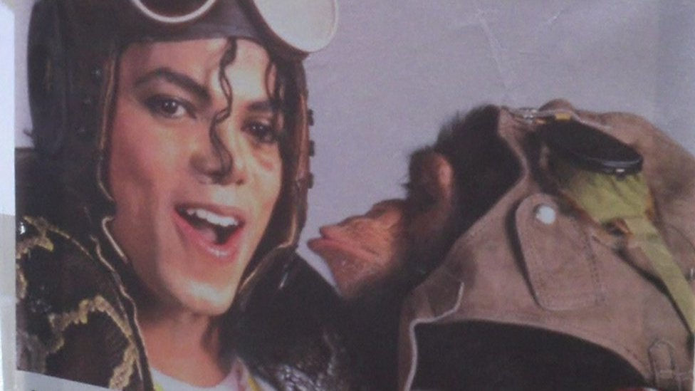 Michael Jackson's pet Bubbles sells artwork