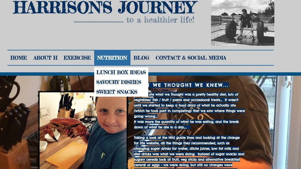 Página web de Harrison.