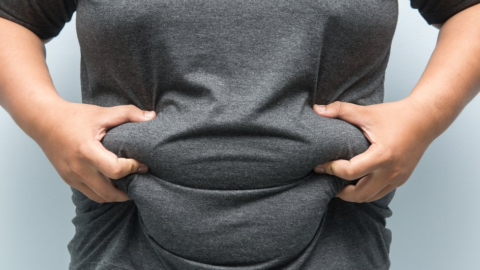 Fat-clogged cells explain why obesity can cause cancer