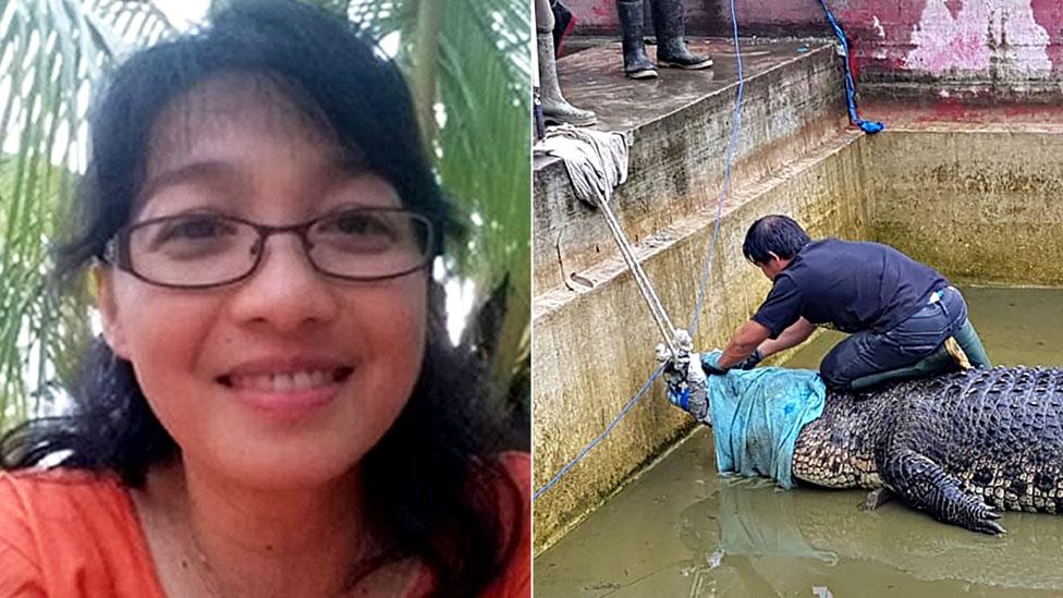 В Индонезии прирученный крокодил загрыз свою смотрительницу