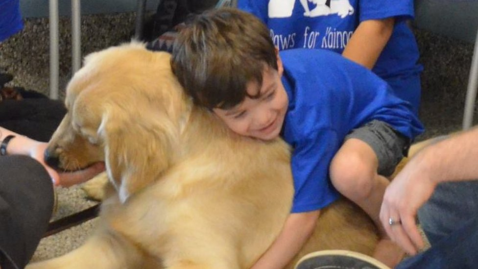 An autistic boy who can't be touched has connected with a service dog
