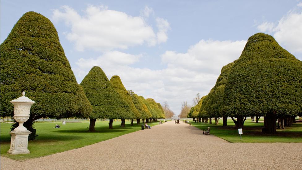 Hampton Court formal gardens