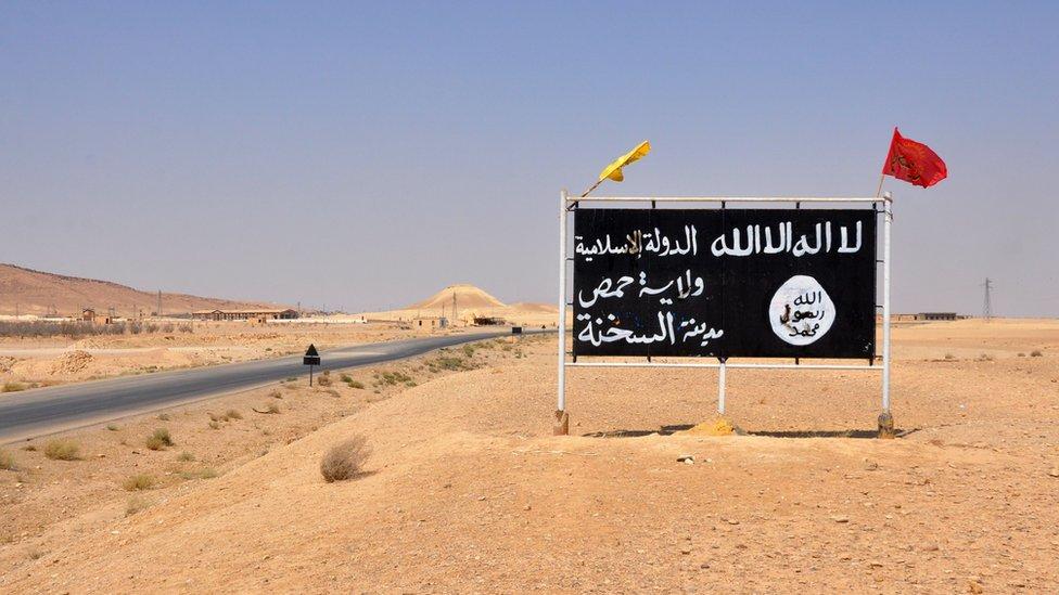 توقفت القافلة في منطقة السخنة الصحراوية التي استعادتها القوات الحكومية مؤخرا من أيدي مسلحي تنظيم الدولة الإسلامية