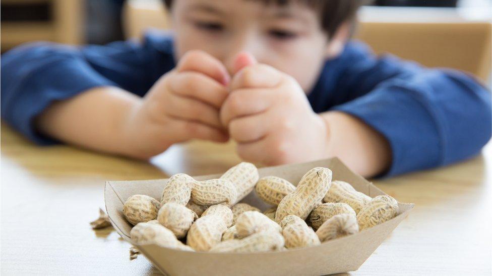 Niño comiendo cacahuetes o maníes