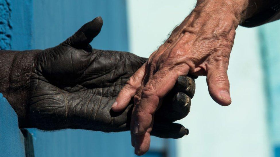 Mano de chimpancé que toma una mano humana.