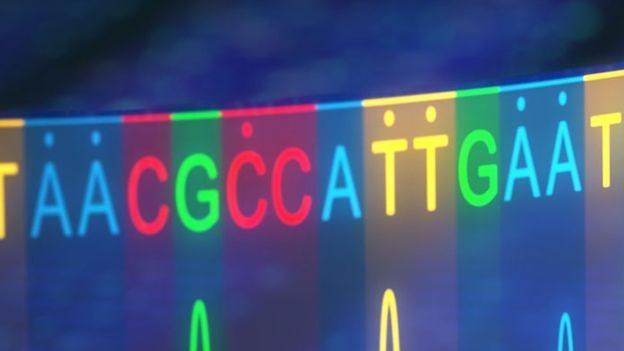 تحرير قواعد الحمض النووي