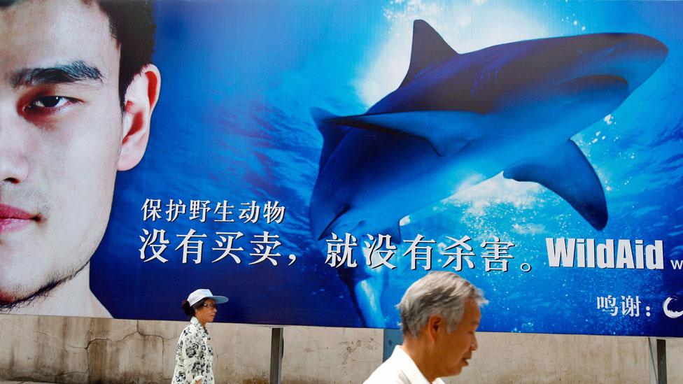 La campaña de concientización en China contra el comercio de objetos provenientes de animales amenazados fue protagonizada por el exjugador de baloncesto Yao Ming.