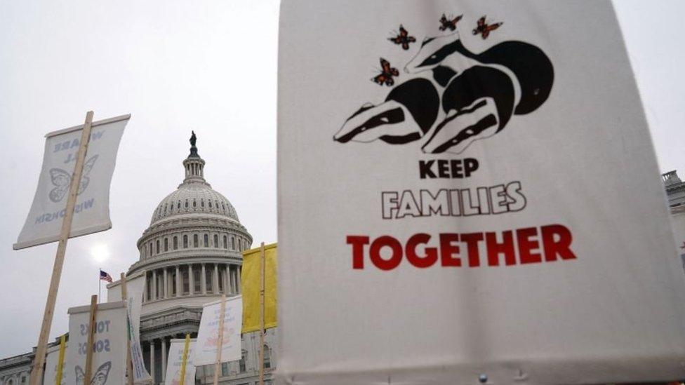 Manifestantes frente al Capitolio, Washington D.C.