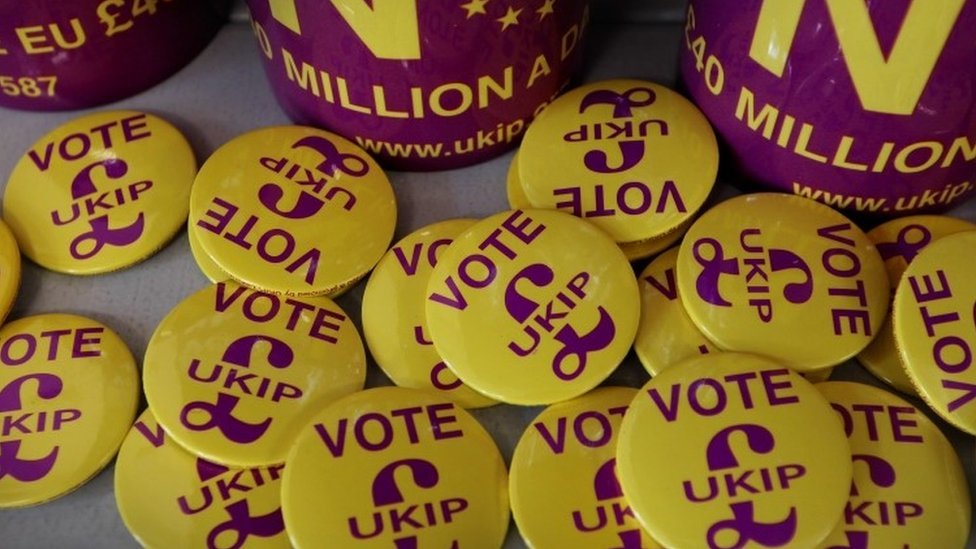 'UKIP's going to be, like, on steroids'