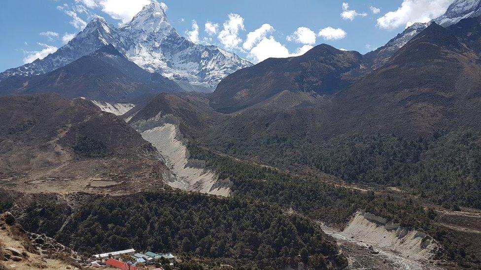 Perubahan Iklim Tanaman Tumbuh Di Zona Yang Lebih Tinggi Di Himalaya Bbc News Indonesia