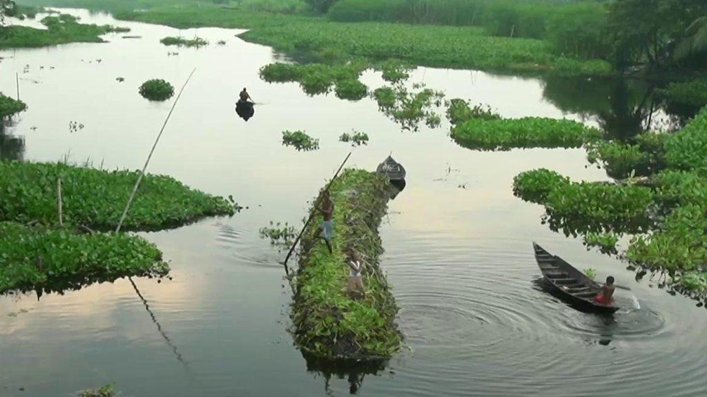بنگلہ دیش میں سیلاب کا علاج، تیرتے کھیت