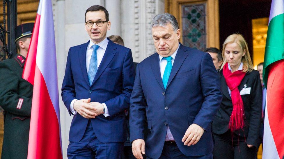 Польський прем'єр нарахував 1,5 мільйона українців у Польщі