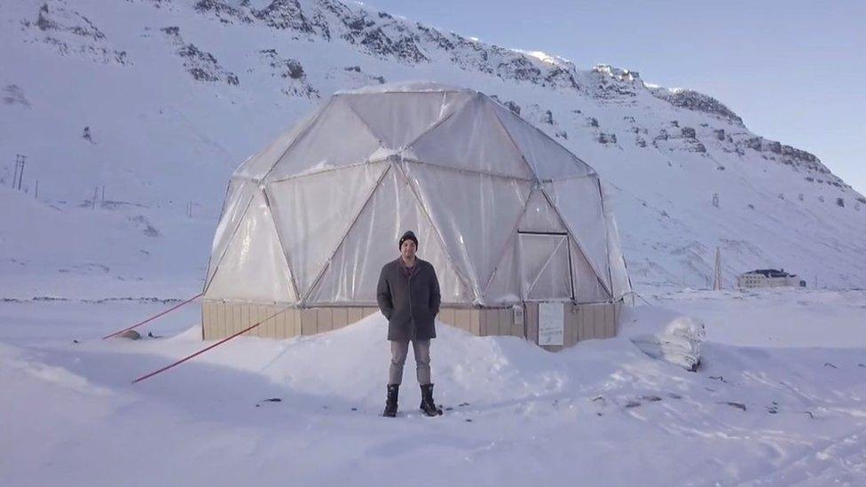 Как выращивать овощи в полярную ночь и зачем это нужно?