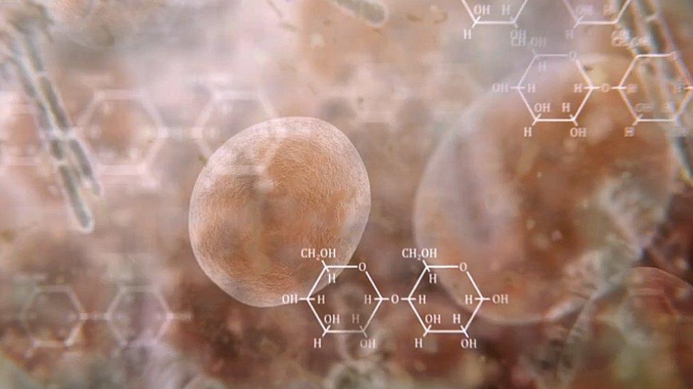 Ilustración de lo que pasa químicamente