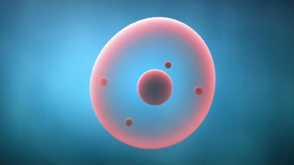 Ilustración de una célula intoxicada por el colesterol