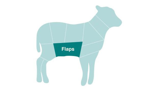 Diagram of sheep showing location of mutton flaps