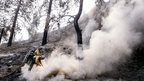 Two firefighters douse a hotspot left from a wildfire