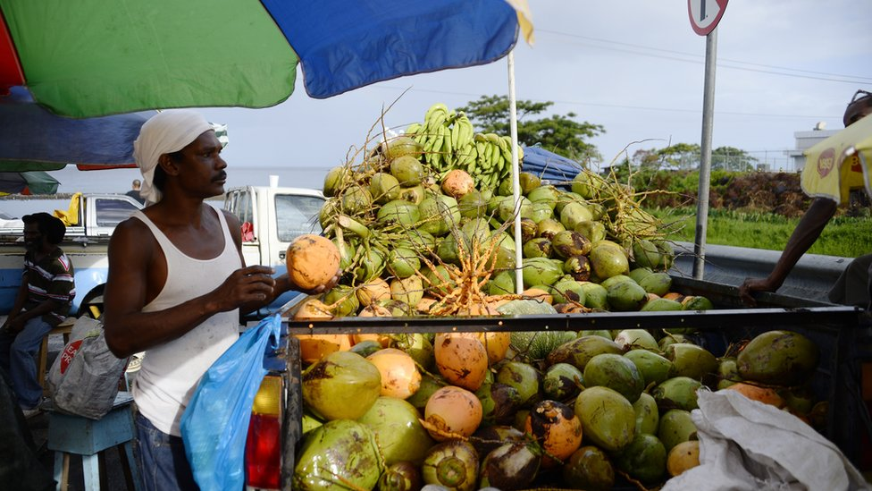 A coconut seller at the market in Roseau
