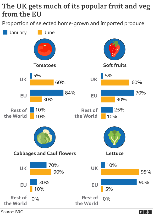 Fruit and veg graphic