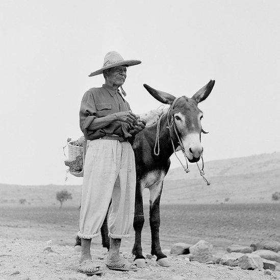 Un hombre con un burro