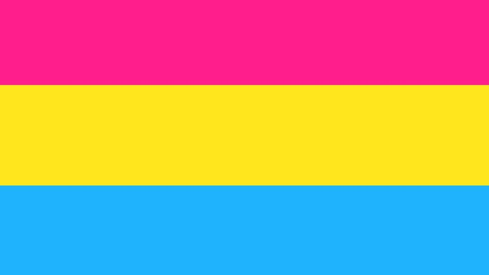 The pansexual flag