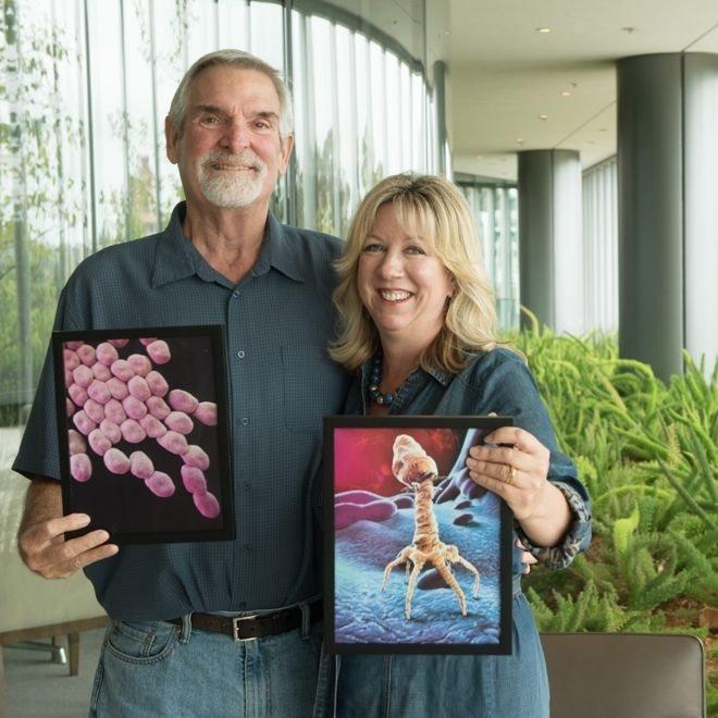 Tom ve Staffanie asinetobakter ve faj resimleriyle