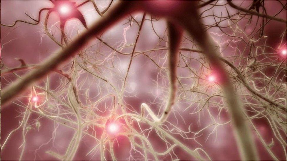Nuralink試圖找到刺激癱瘓患者大腦、使他們可以控制電腦的方式