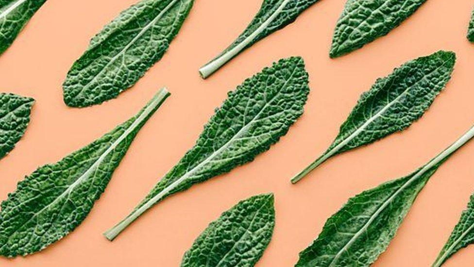 الخضروات الورقية من أهم مصادر فيتامين (ك)