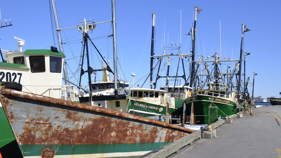 Several fishing boats are shown tied to a long dock