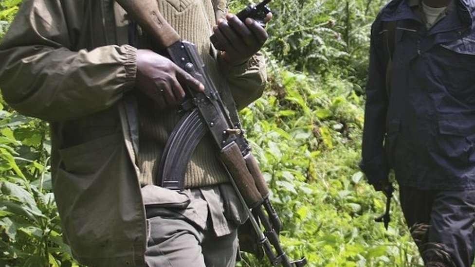 Six rangers killed in DR Congo's Virunga National Park thumbnail