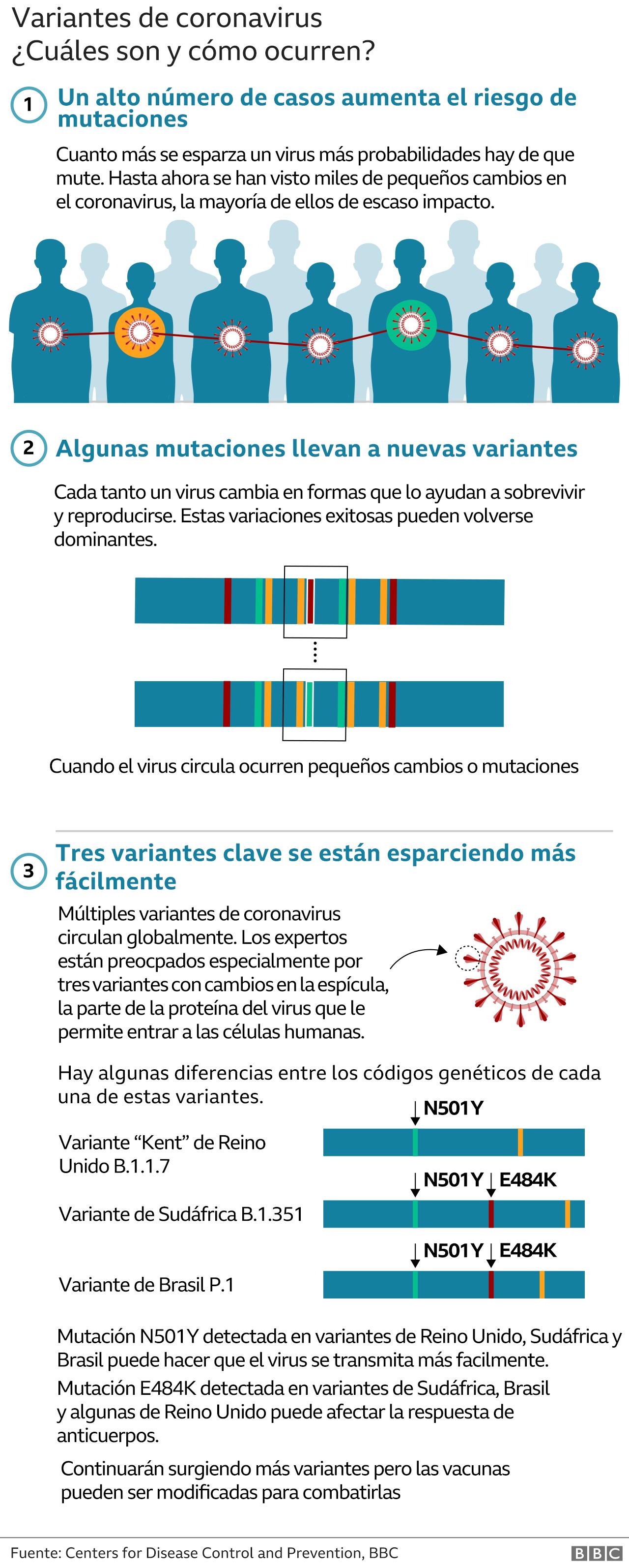 Gráfico sobre las nuevas variantes de coronavirus