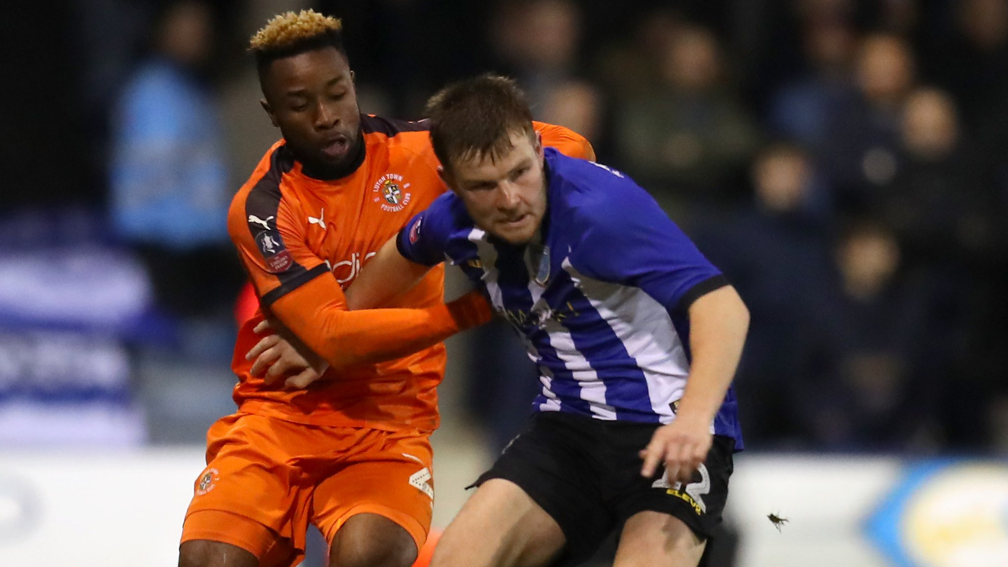 Luton Town 0-1 Sheffield Wednesday: Championship side book a fourth round tie at Chelsea