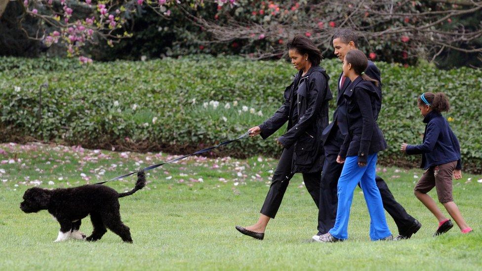 لكلب بو برفقة أفراد العائلة في البيت الأبيض