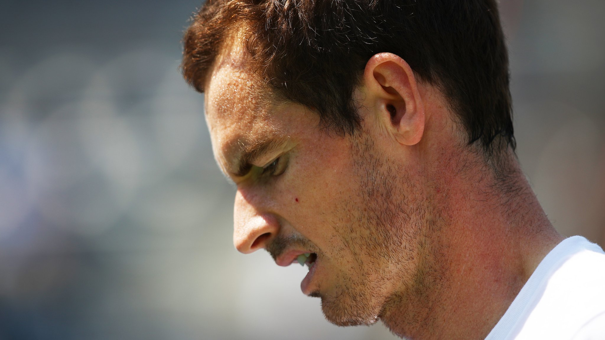 Injured Murray not ready for ATP Challenger wildcard