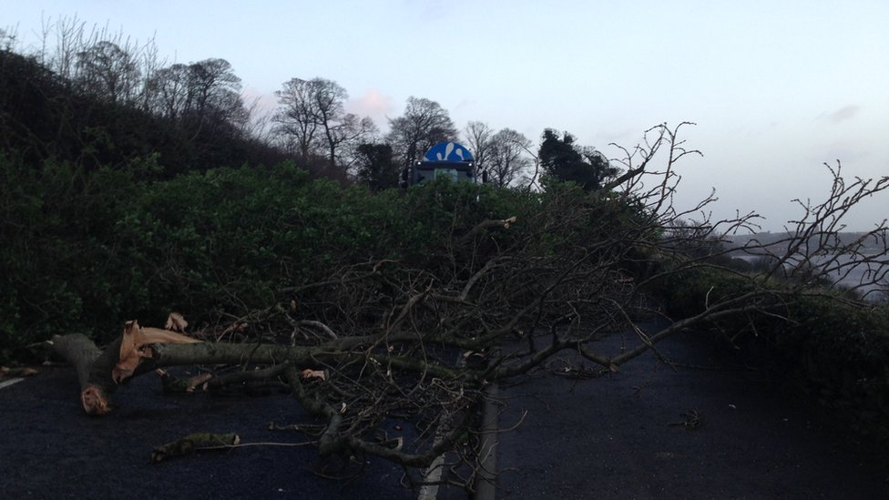 The Old Letterkenny Road in Derry is also closed because of a fallen tree