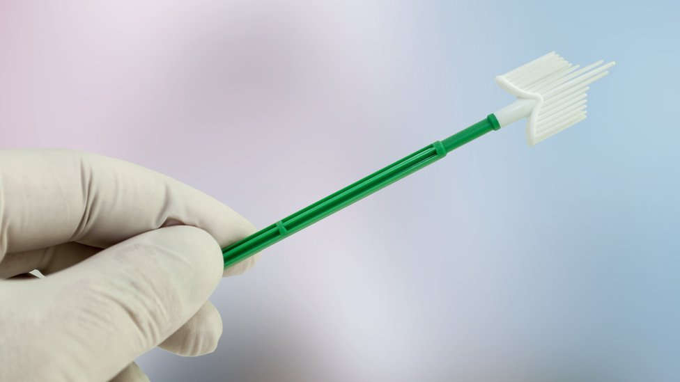 A brush used in cervical screening