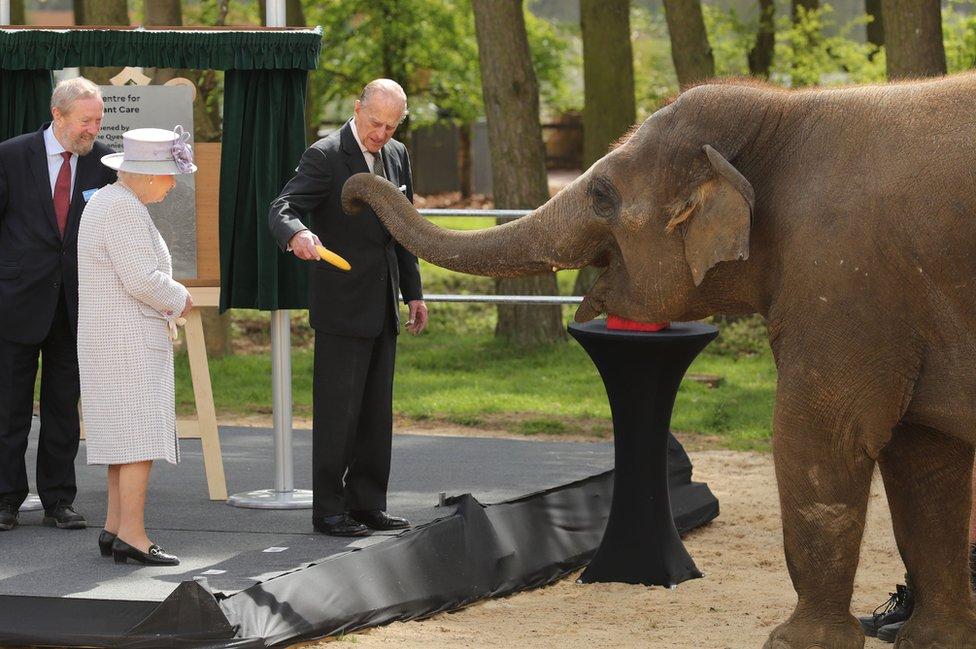 La reina Isabel II y el duque de Edimburgo con un elefante en el zoológico Whipsnade, donde inauguraron el Centro para el Cuidado de Elefantes durante una visita en Bedfordshire.
