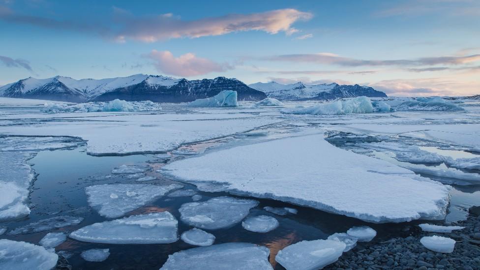 Segmentos de hielo flotando en el mar en el Ártico