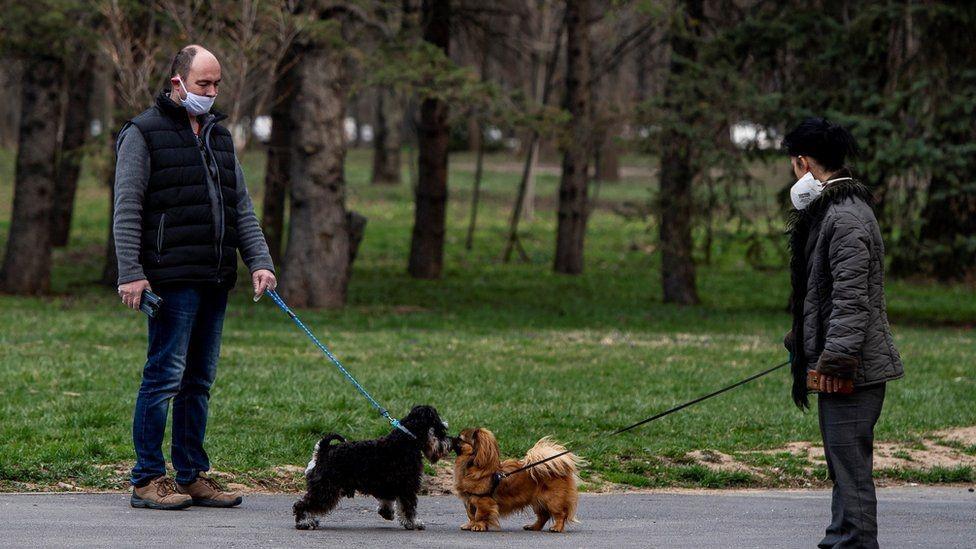 Dos personas paseando a un perro cada una.