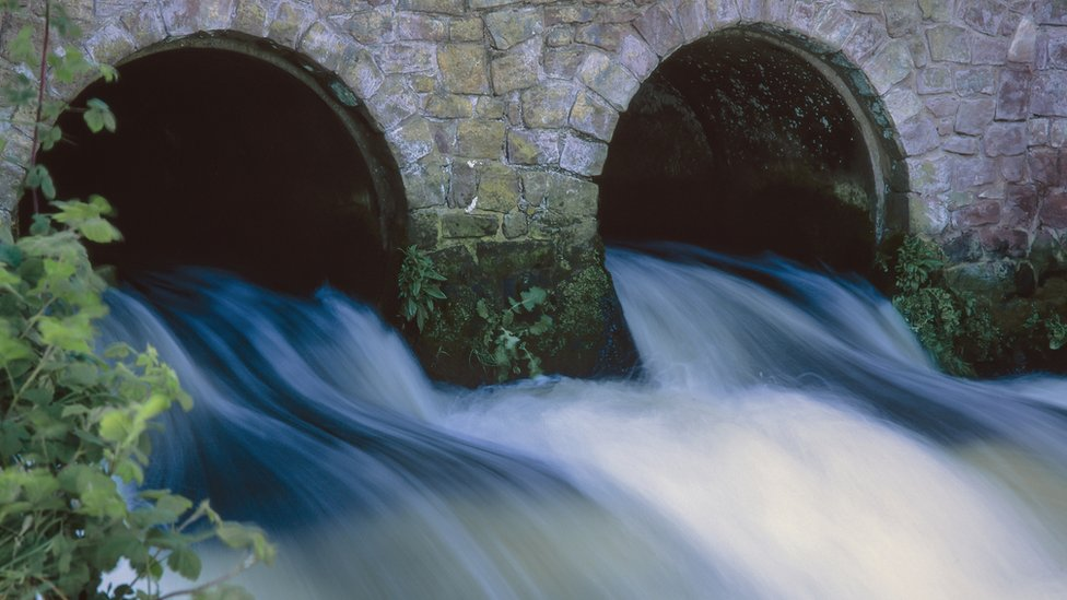Two sewage drains